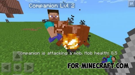 THE COMPANION MOD for Minecraft PE 0.9.5