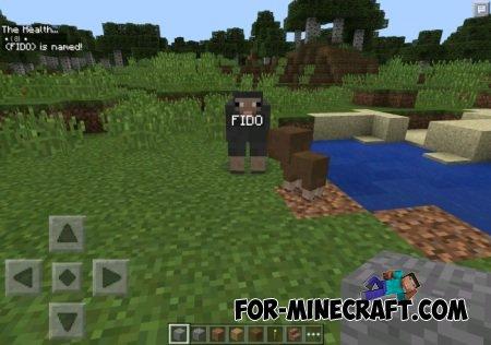 NameYourMobs mod for Minecraft PE 0.10.5