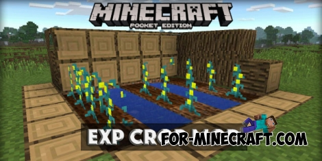 Exp Crop mod for Minecraft PE 0.14.0/0.14.1