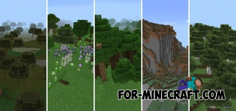 RockTheBiome seed for Minecraft Pocket Edition