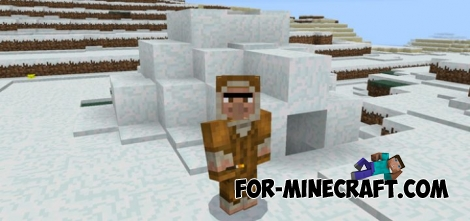 Snow Village Seed for Minecraft Pocket Edition