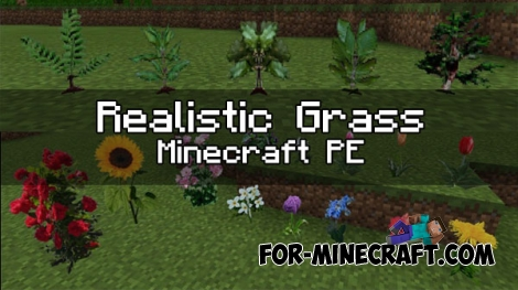Realistic Grass textures for Minecraft PE (0.16.0/1.0.0/1.0.2)